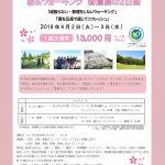 桜&ウォーキング 春爛漫の2日間